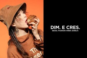 dim18ss_1