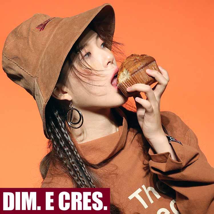 dim18ss_14