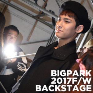bigpark17fw_icon