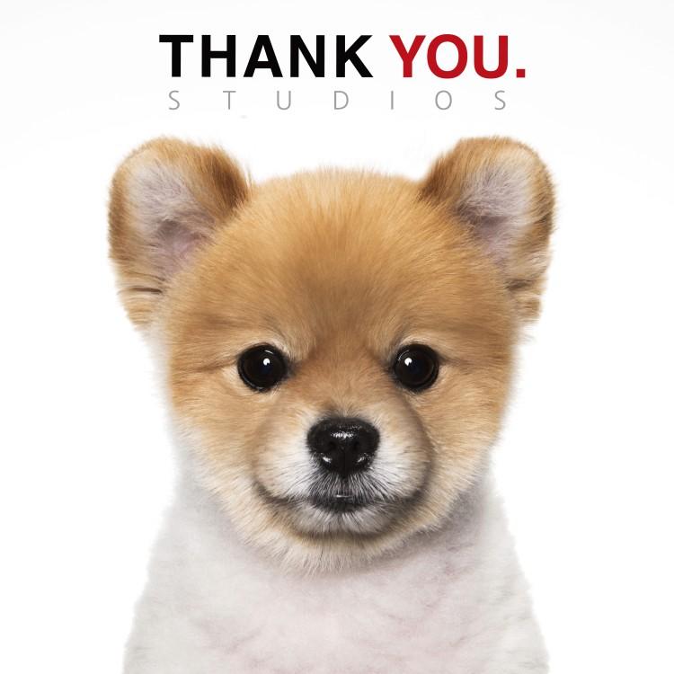 thankyou_studio_300mmx300mm