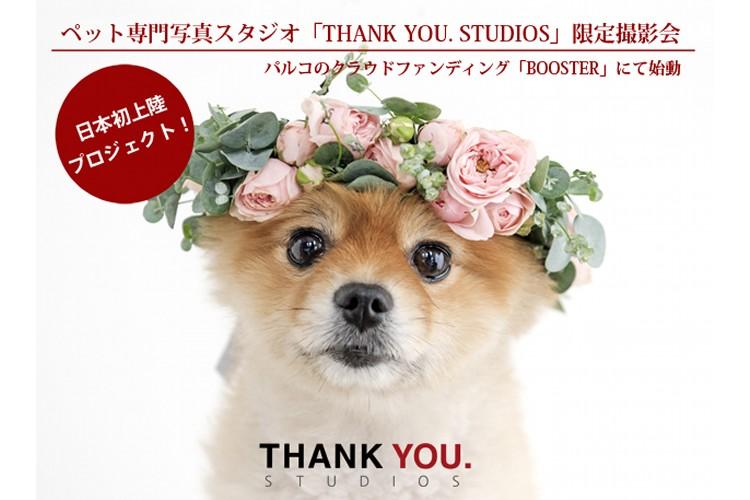 韓国発ペット専門写真スタジオ「THANK YOU.STUDIOS」限定撮影会のクラウドファンディング始動!